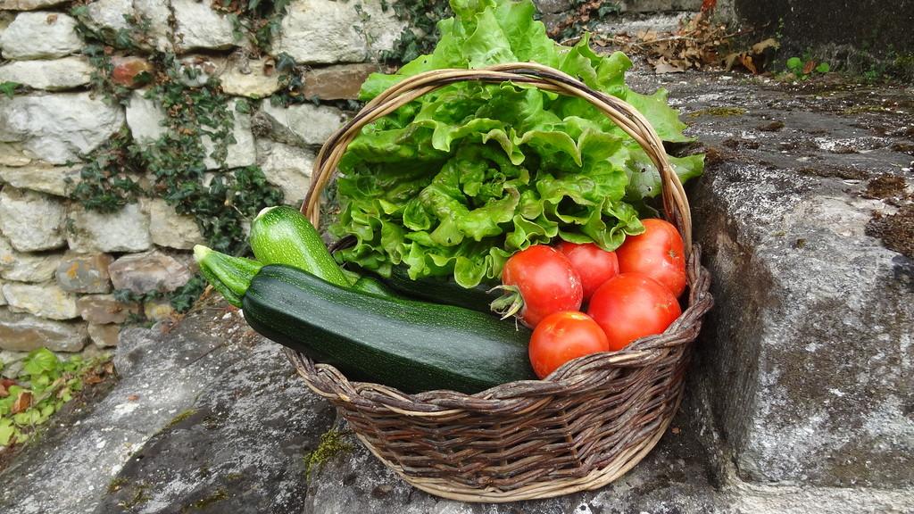 Gemüse aus dem Gemüsegarten
