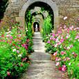 MEZIDON CANON - Le chateau et les jardins - 20 km
