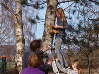 Fünf Nisthilfen wurden auf dem Schulgelände des Gymnasium Ernestinum durch die Tierschutz-AG aufgehängt. - Foto: Kathy Büscher