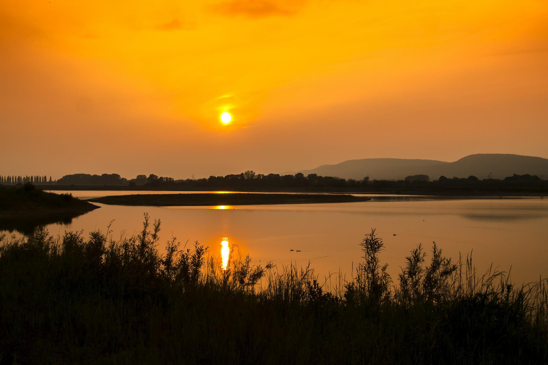 Sonnenuntergang in der Auenlandschaft.