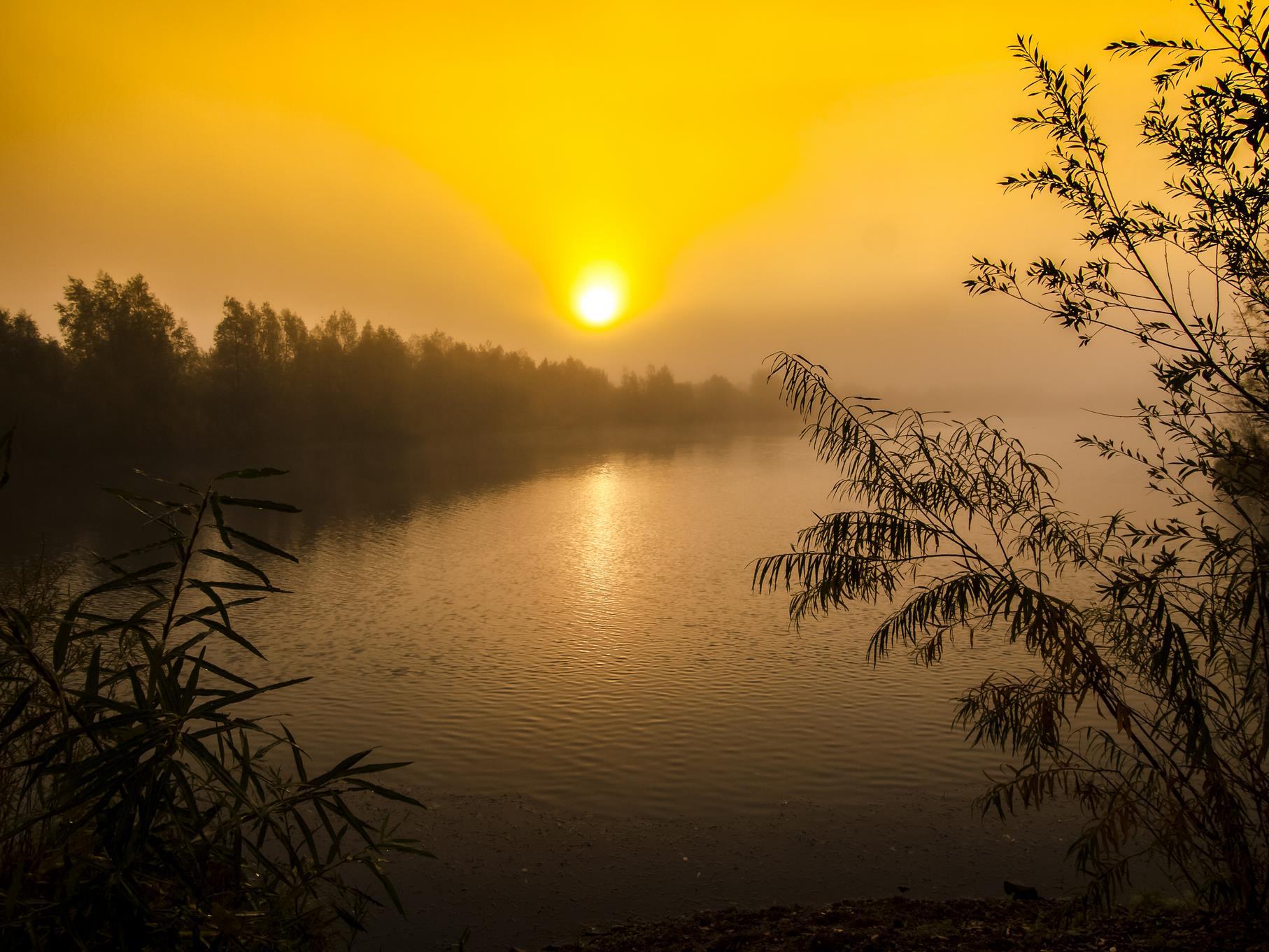 Sonnenaufgang am östlichen Teich.