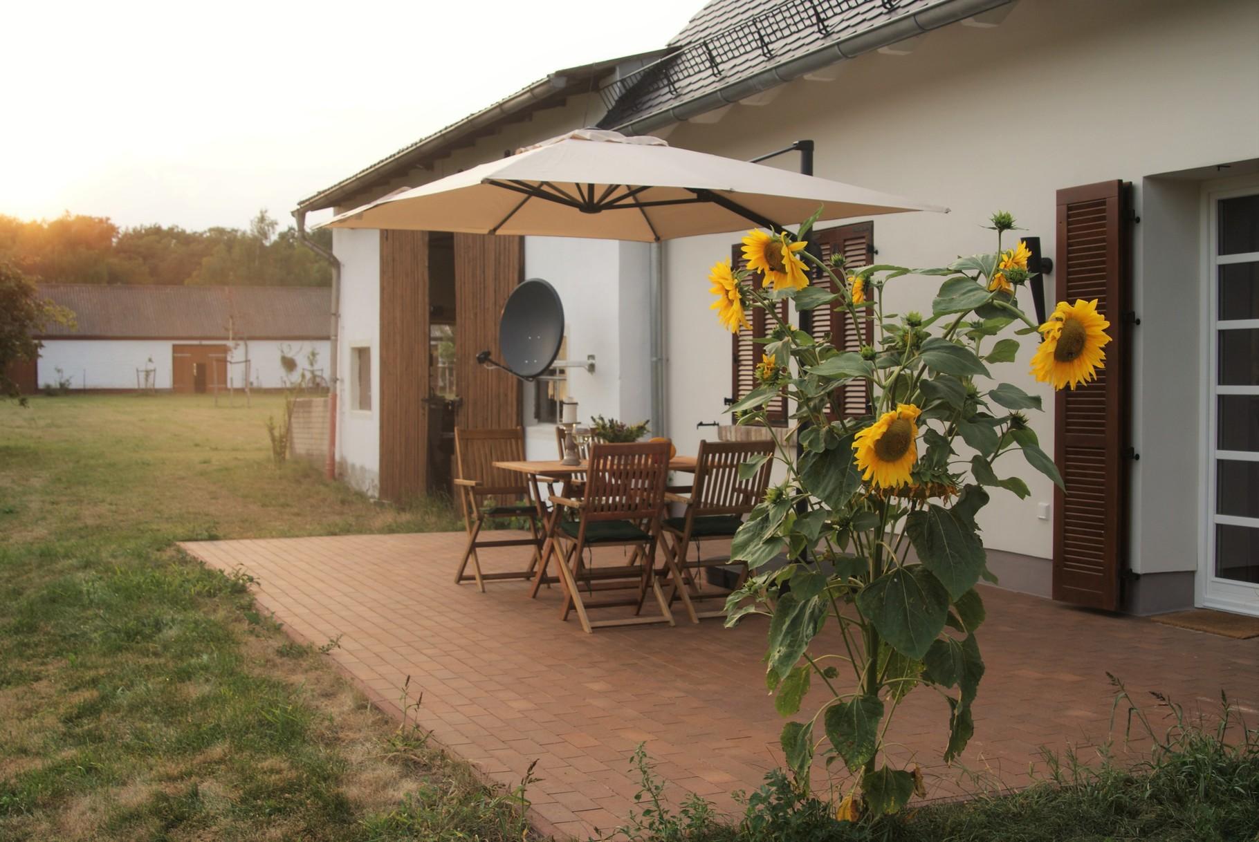 AUGUST private Terrasse mit Blick ins grüne Idyll