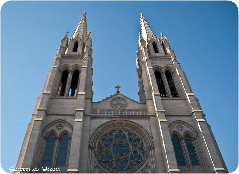 Cathedral Basilica of the Immaculate Conception - diese erinnert mich an Notre Dame in Paris