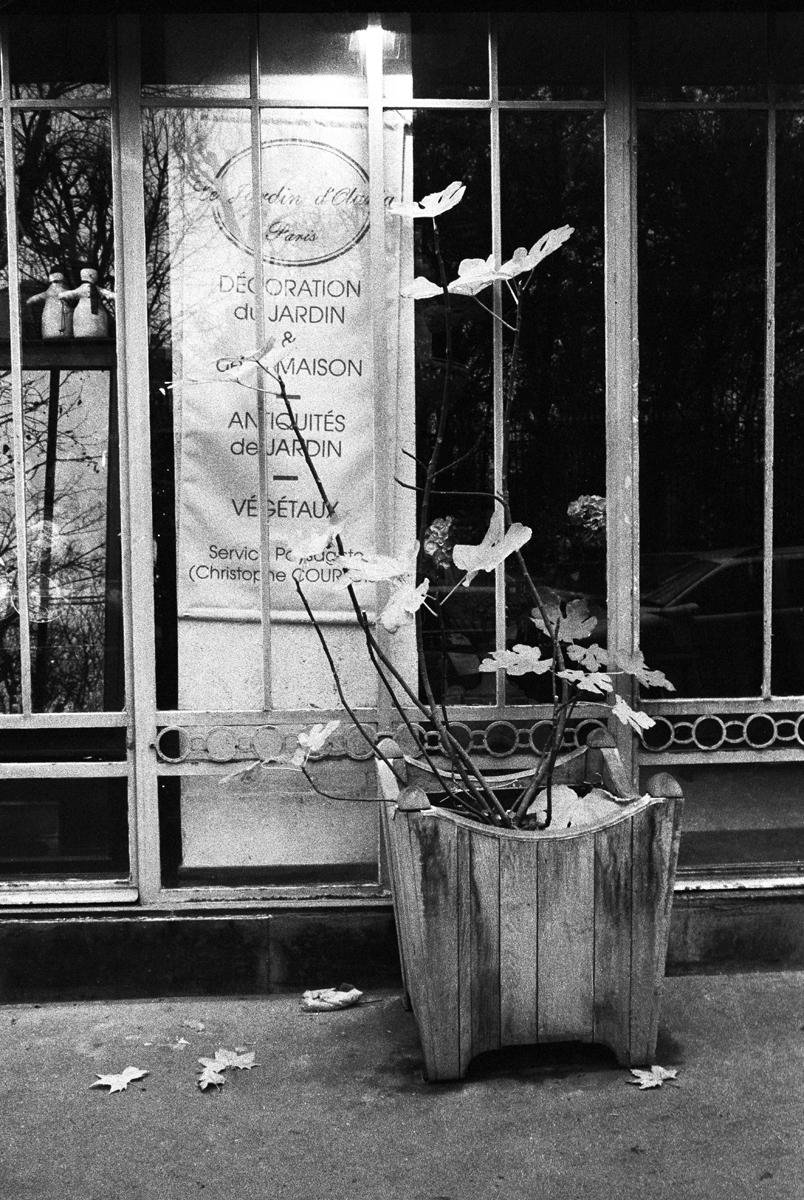 Rodolphe Labrador © Effet papillon-2005
