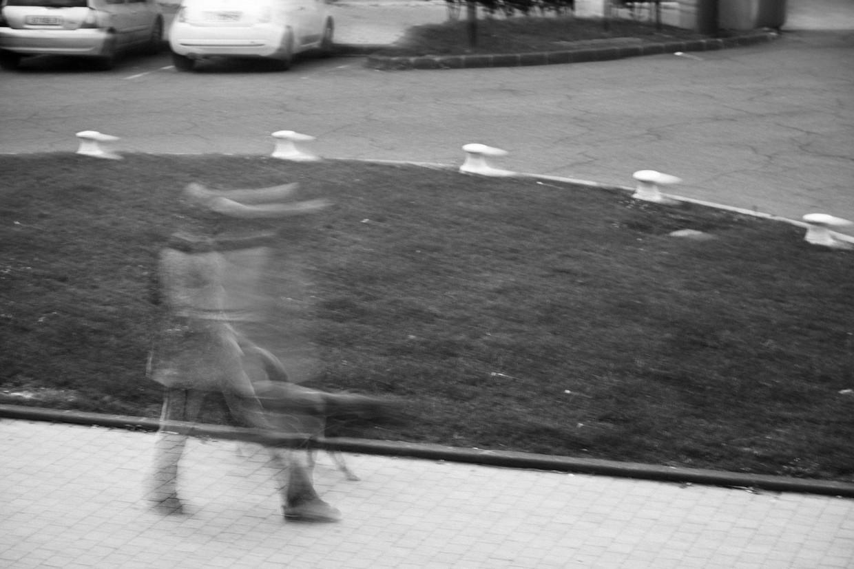 Rodolphe Labrador © 2014