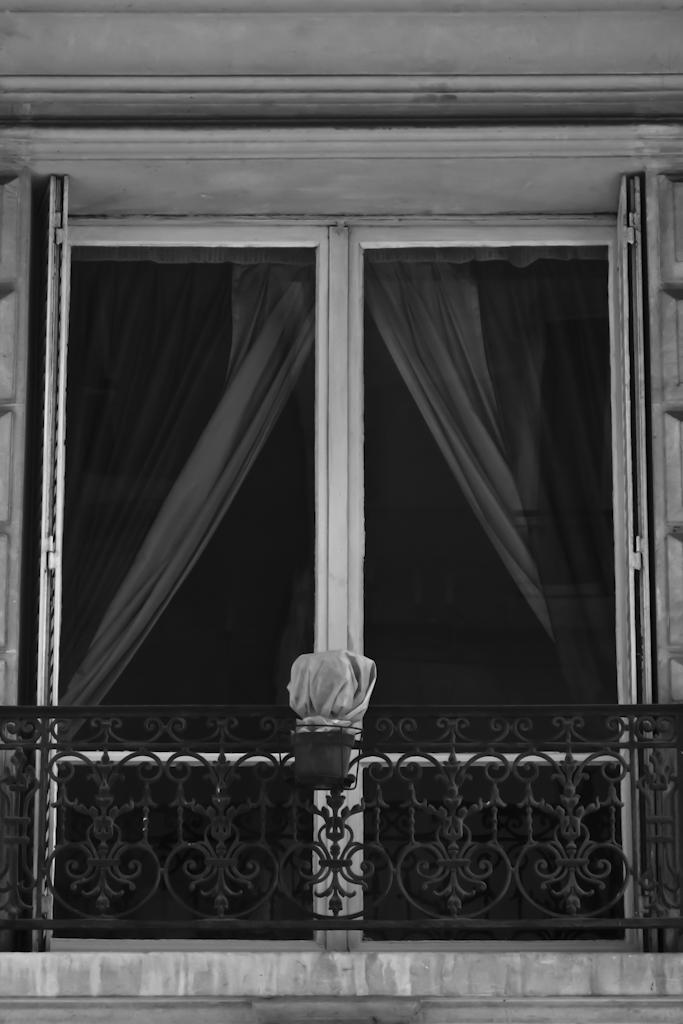 Rodolphe Labrador © Pot à la fenêtre, 2011
