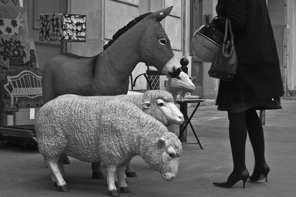 Rodolphe Labrador © Rue de Médicis, 2011