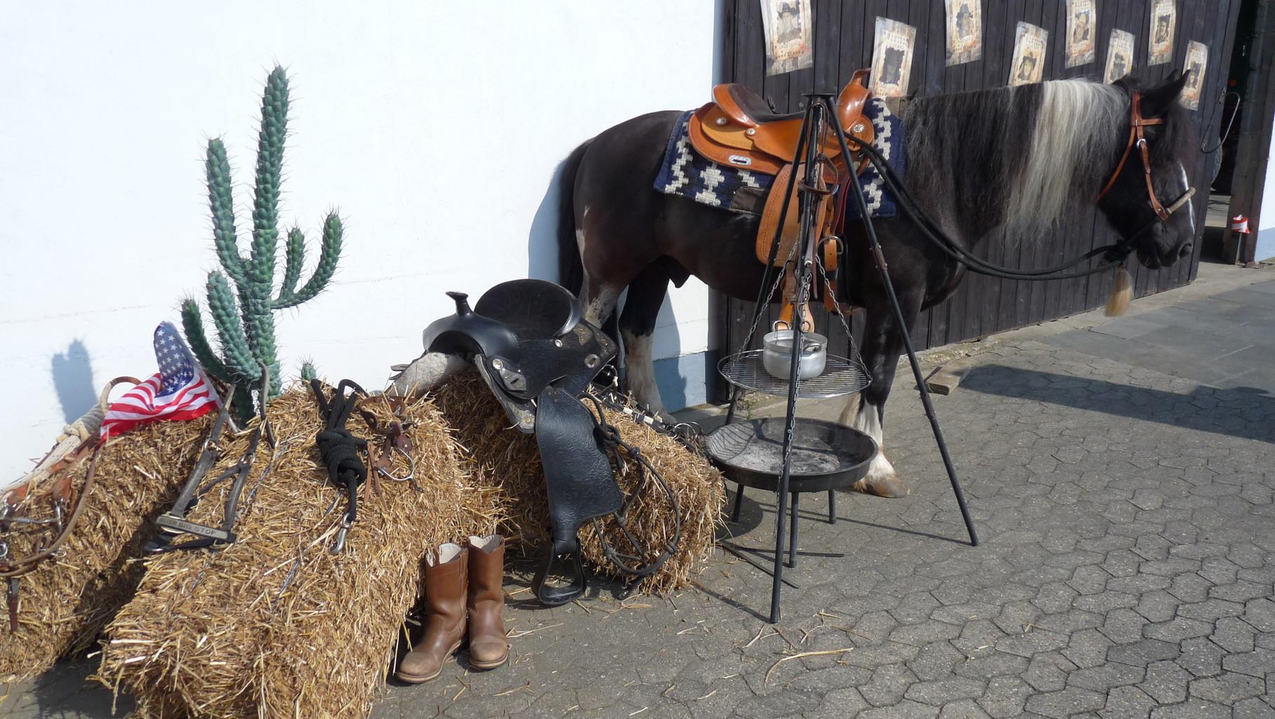 ...sogar mit Pferd ;o)