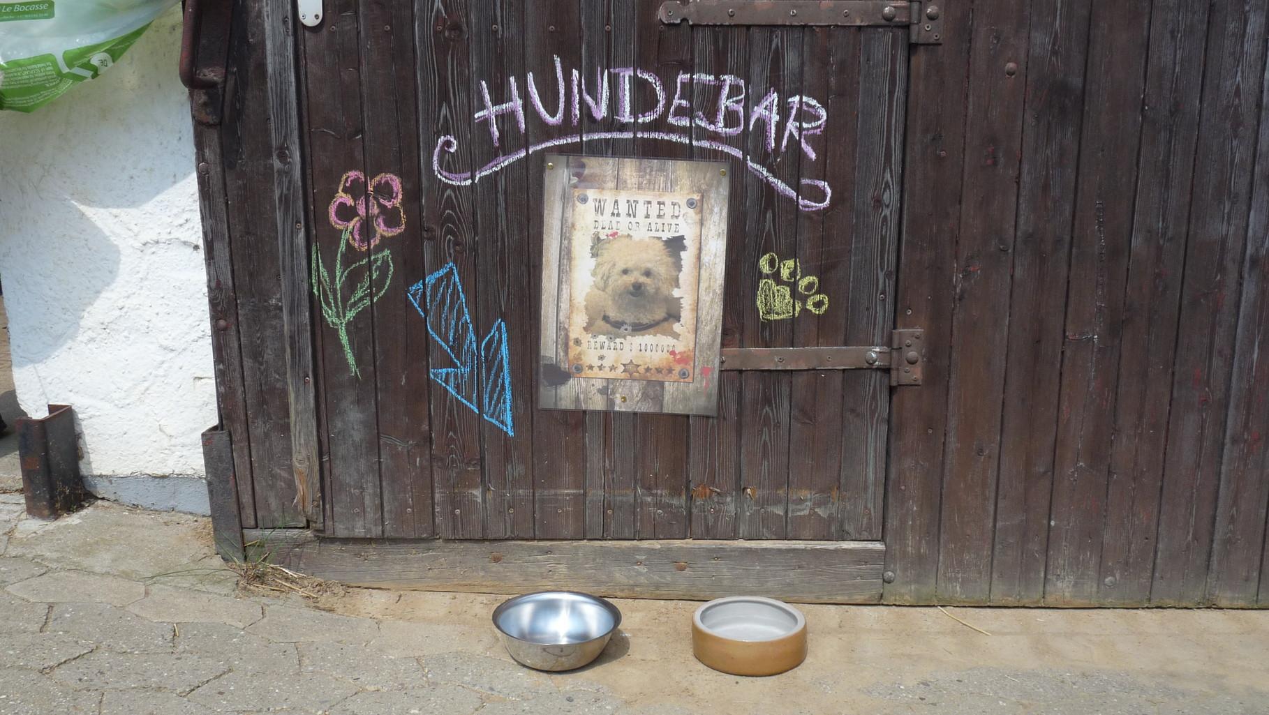 Hunde sind bei uns immer herzlich Willkommen.