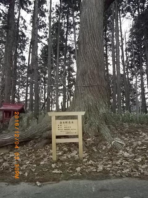 喜良市立野神社5