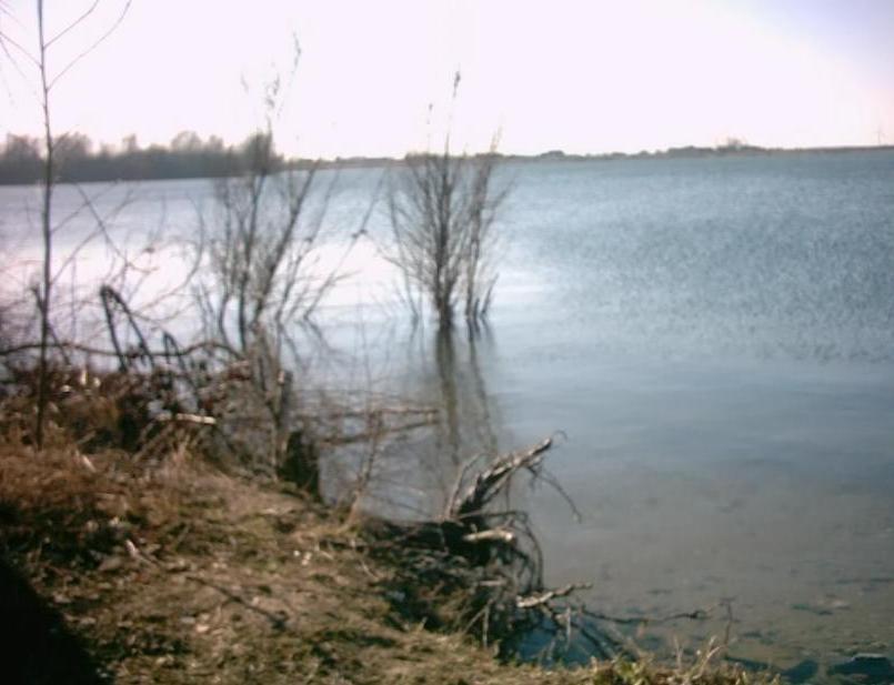 unberührte Uferbereiche