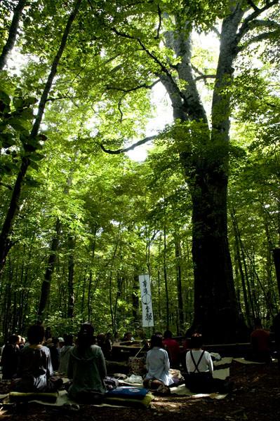 100人の「ブナの森」の坐禅会