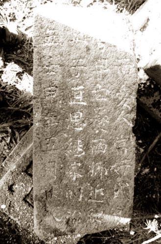 西郷頼母近悳の墓といわれている立川家の墓の裏