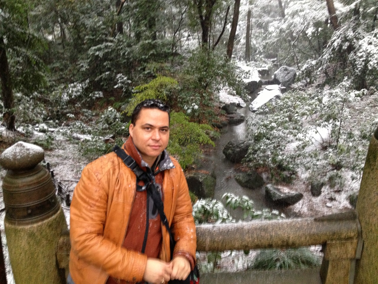 Very beautiful .... bit cold ... — at 明治神宮 (Meiji Shrine).