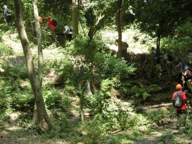 同じく茅ケ崎公園の坂道をウォーキング
