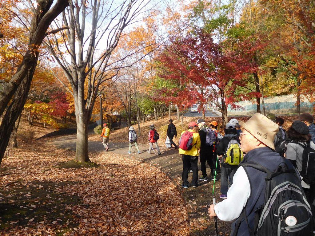 ここでユーターンして観る紅葉も綺麗です