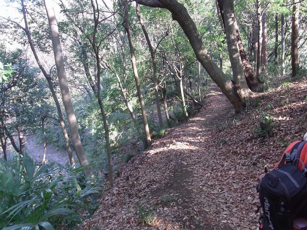 下三輪玉田谷横穴墓群への山道は狭いし、枯葉が多く慎重に!!