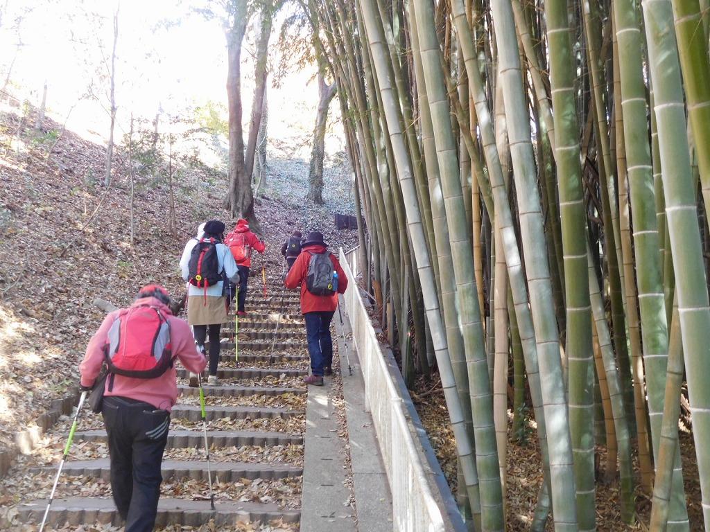都筑古民家への竹林横の階段を上がる