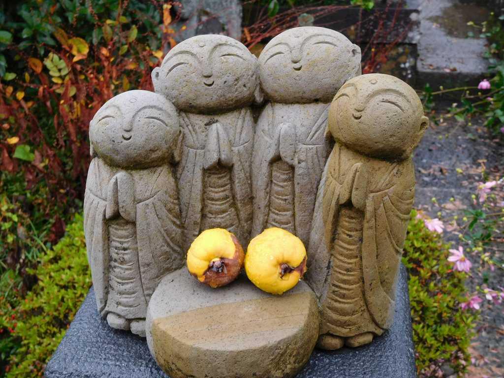 お地蔵さんの前には諏訪名産「花梨」が供えられています