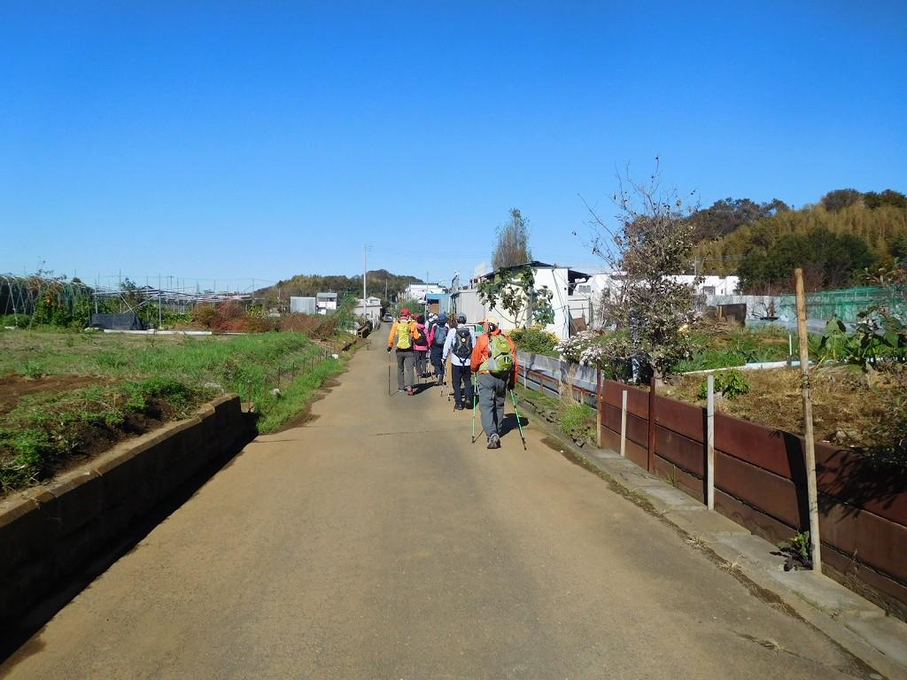 横浜上麻生道路から農道へ入りました