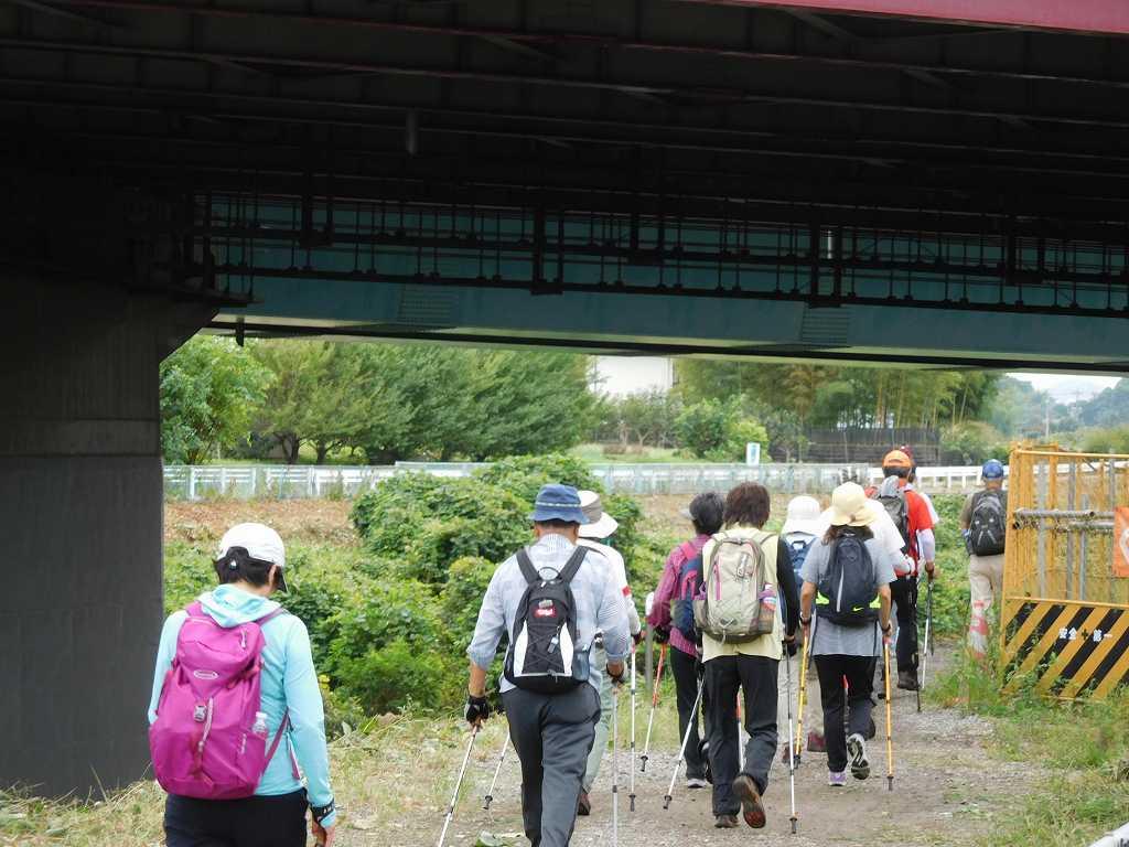 東名高速架橋下をウォーキング