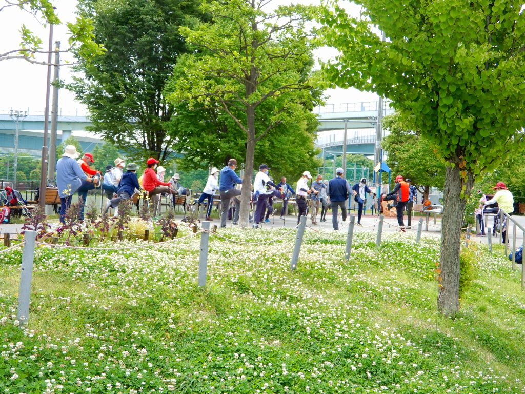 新緑・白詰草の多い公園でウォーミングアップ