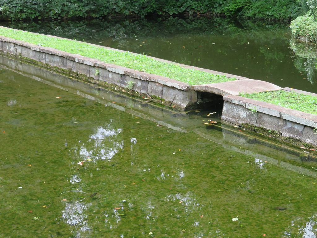 中国の名勝地 西湖に架かる長い堤を表現したもの「西湖の堤」