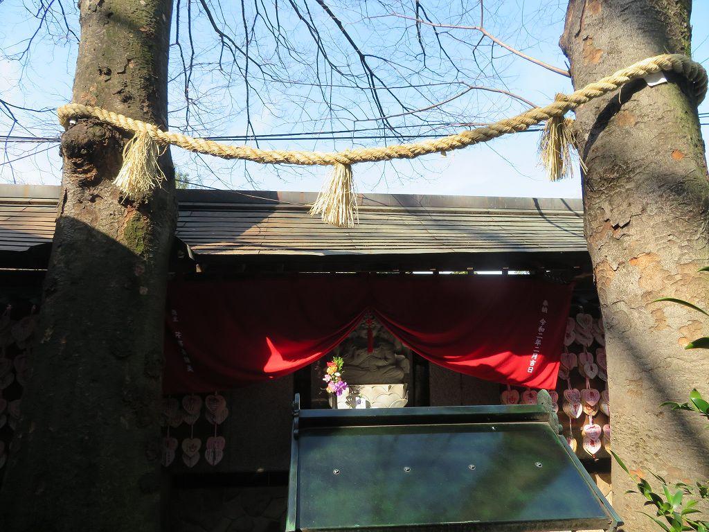 本稲成の御神木