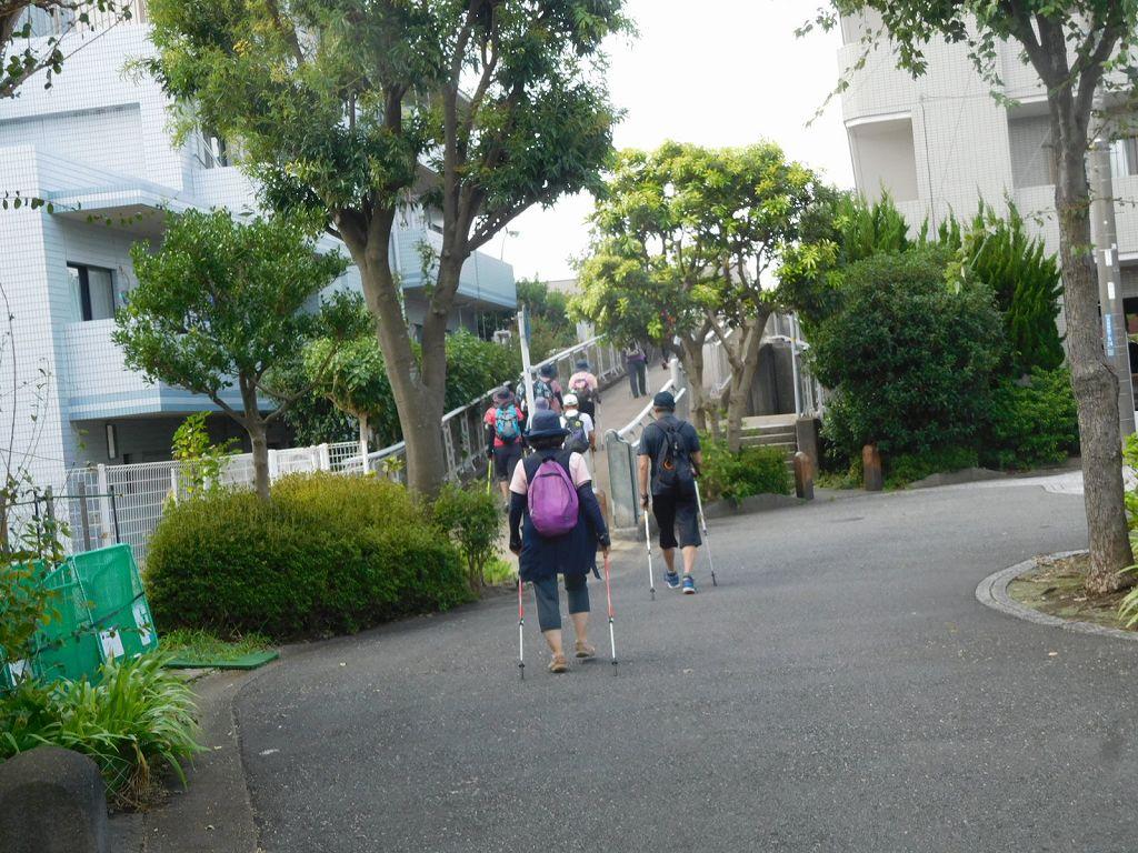 栃ノ木公園から荏田高校へ向かいます