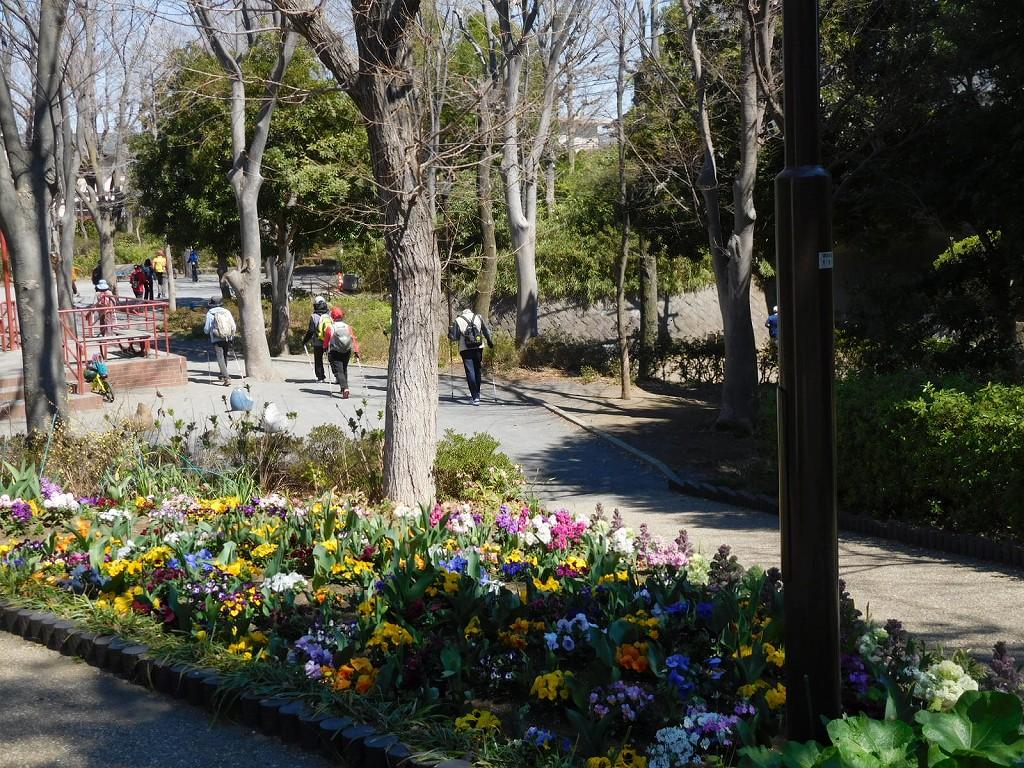 見花山かりん公園の花壇も綺麗に手入れしてありますよ