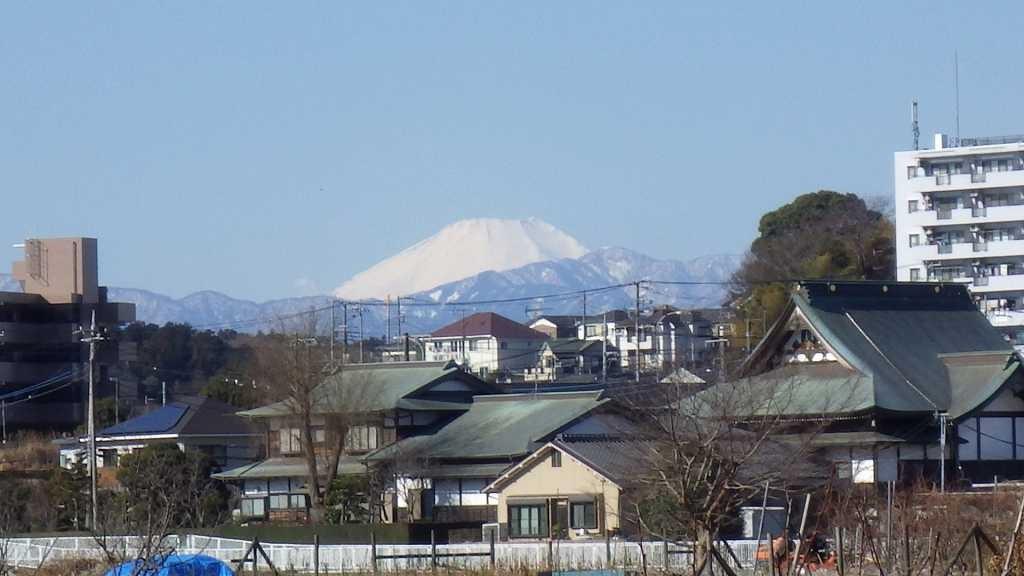 富士山が見え隠れしています。青葉で見るより大きく見える感じ