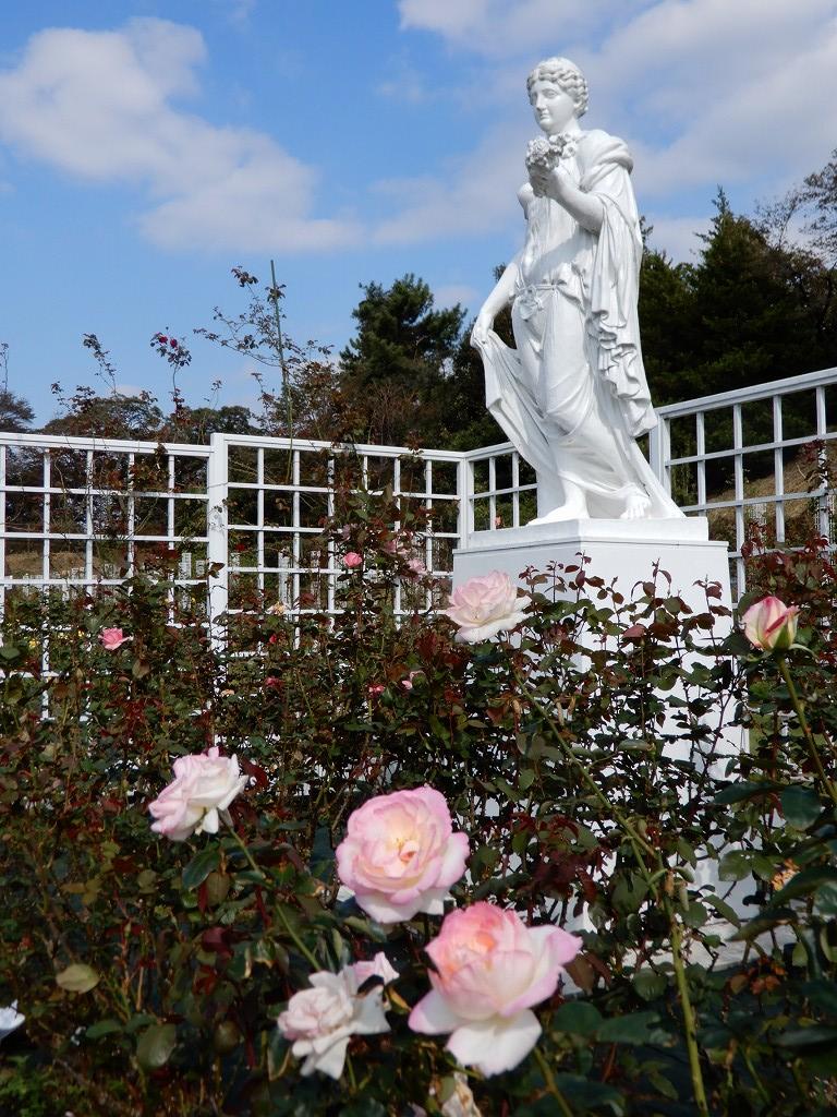 ロイヤルコーナーに咲くバラと像