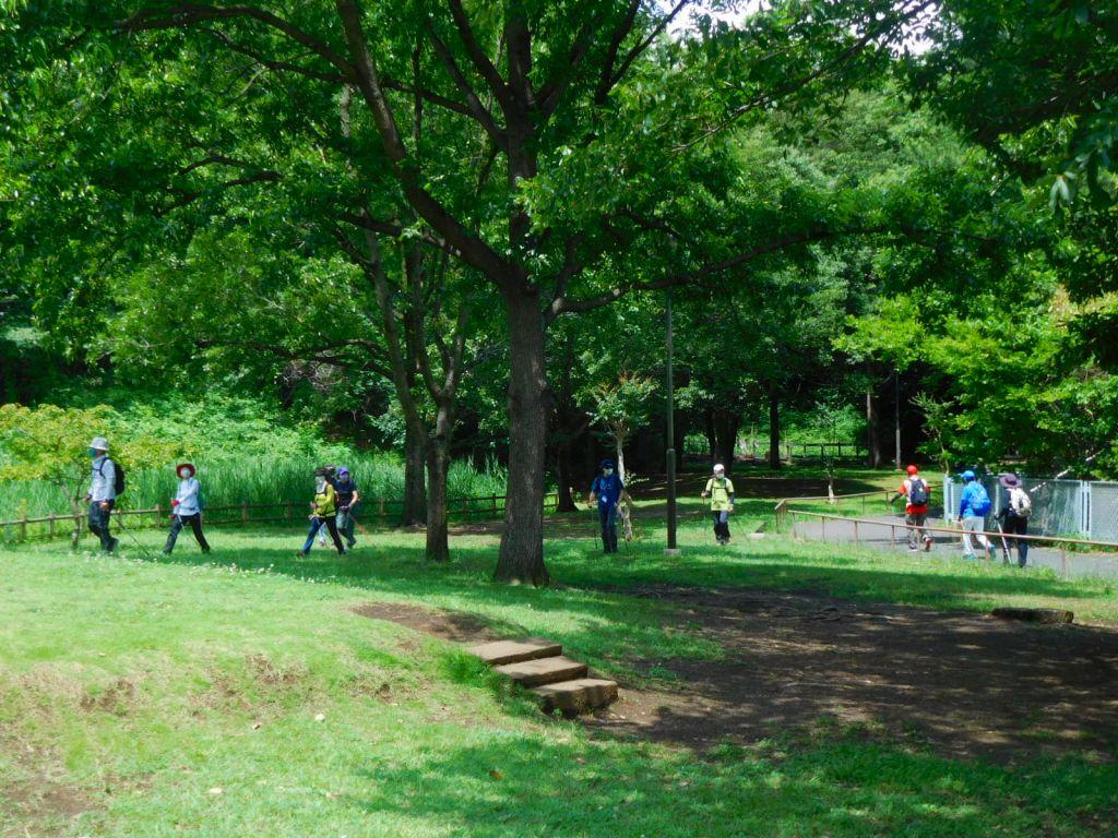 緑深い北八朔公園の水辺横を歩く一班・二班
