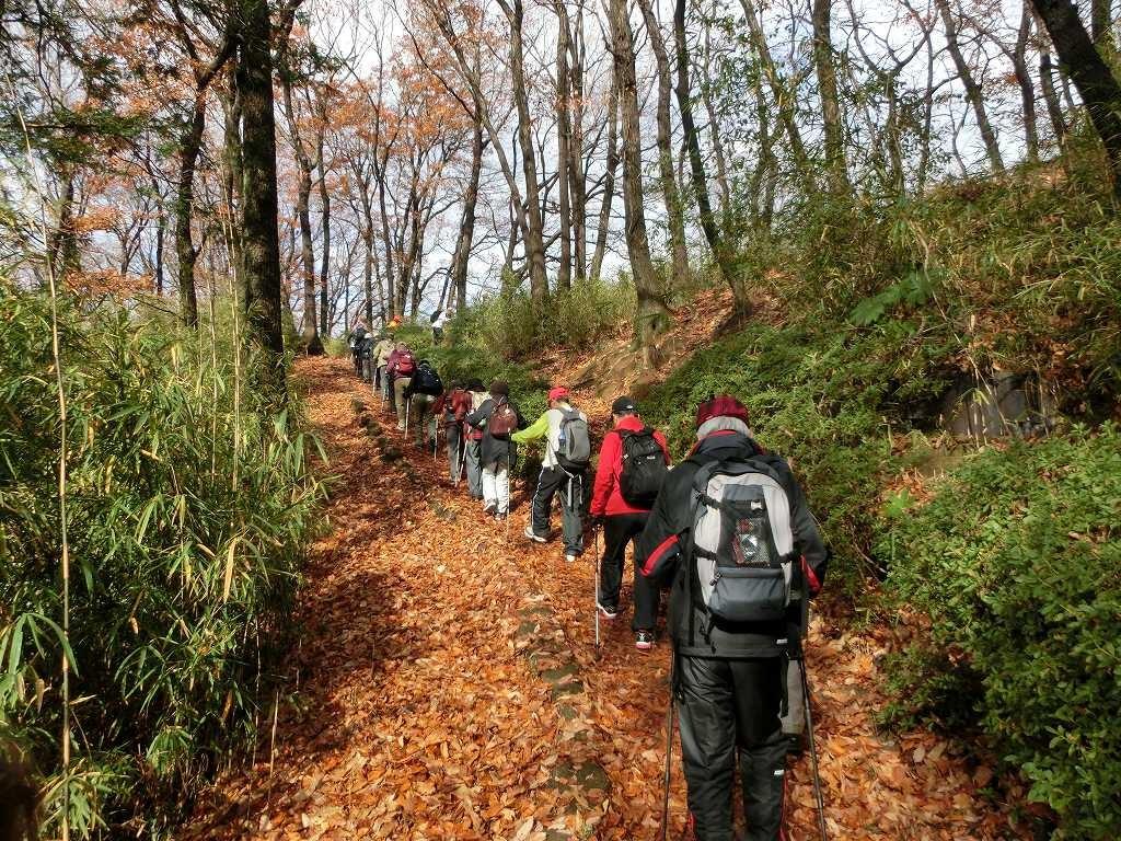 桜台公園 落葉の上を滑らないよう慎重にウォーキング