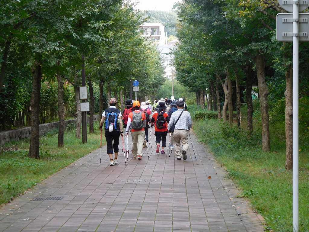 荏田東小学校横の人通りの少ない道をウォーキング