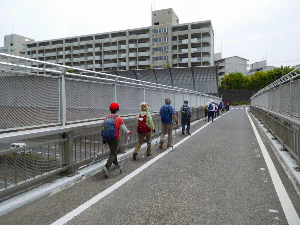 高速道路高架橋を車に注意しながら渡ります