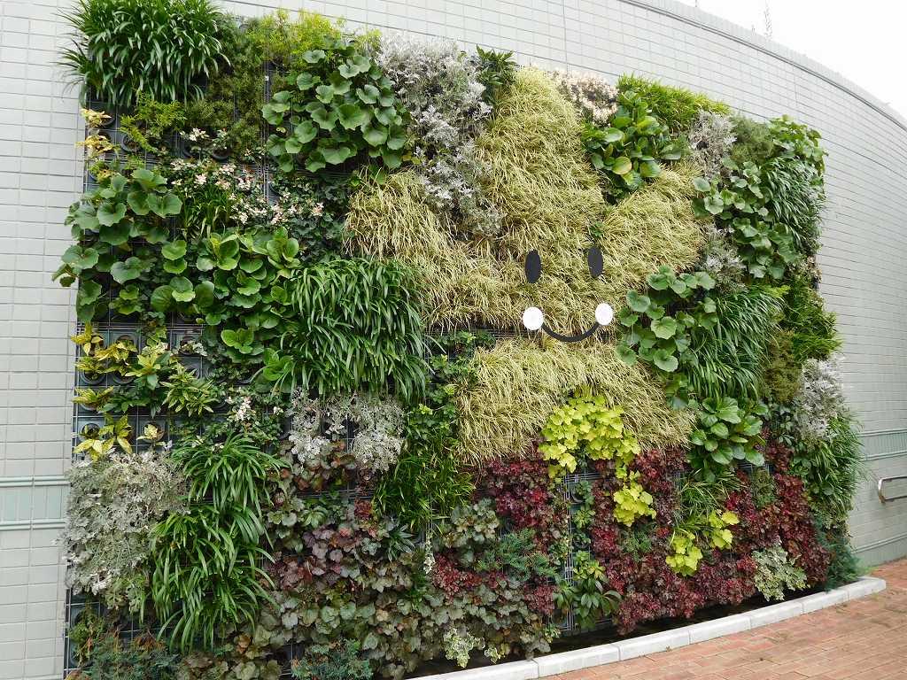 青葉区役所演舞場横は植物で飾ってありました