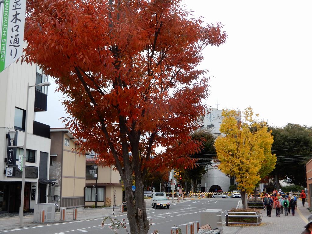 紅葉が横浜より早いですね