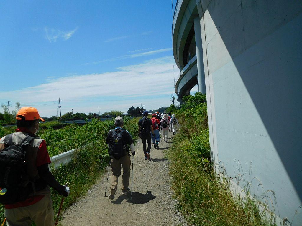 鶴見川沿いを歩く