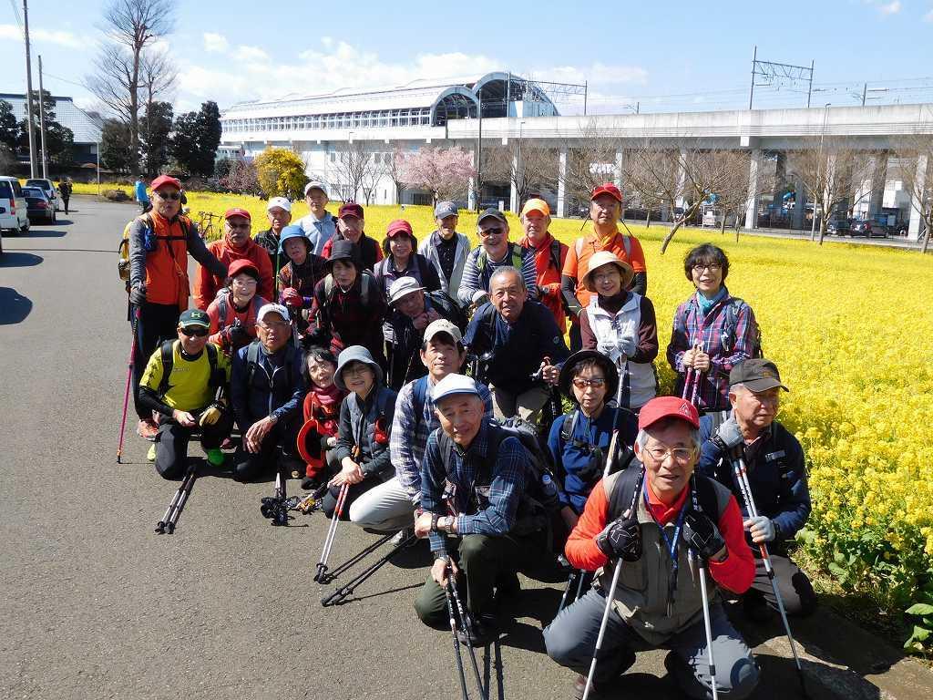 都筑区川和駅近所の菜の花畑へ