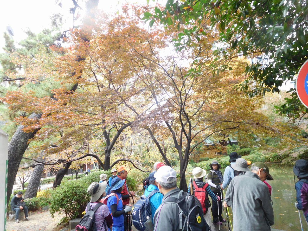 紀尾井町にある清水谷公園池で説明を聞く