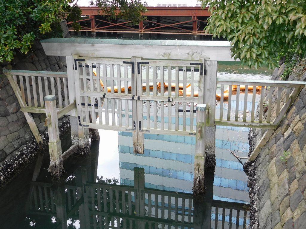 海からひいている水門で池は海水でハゼなどがいる