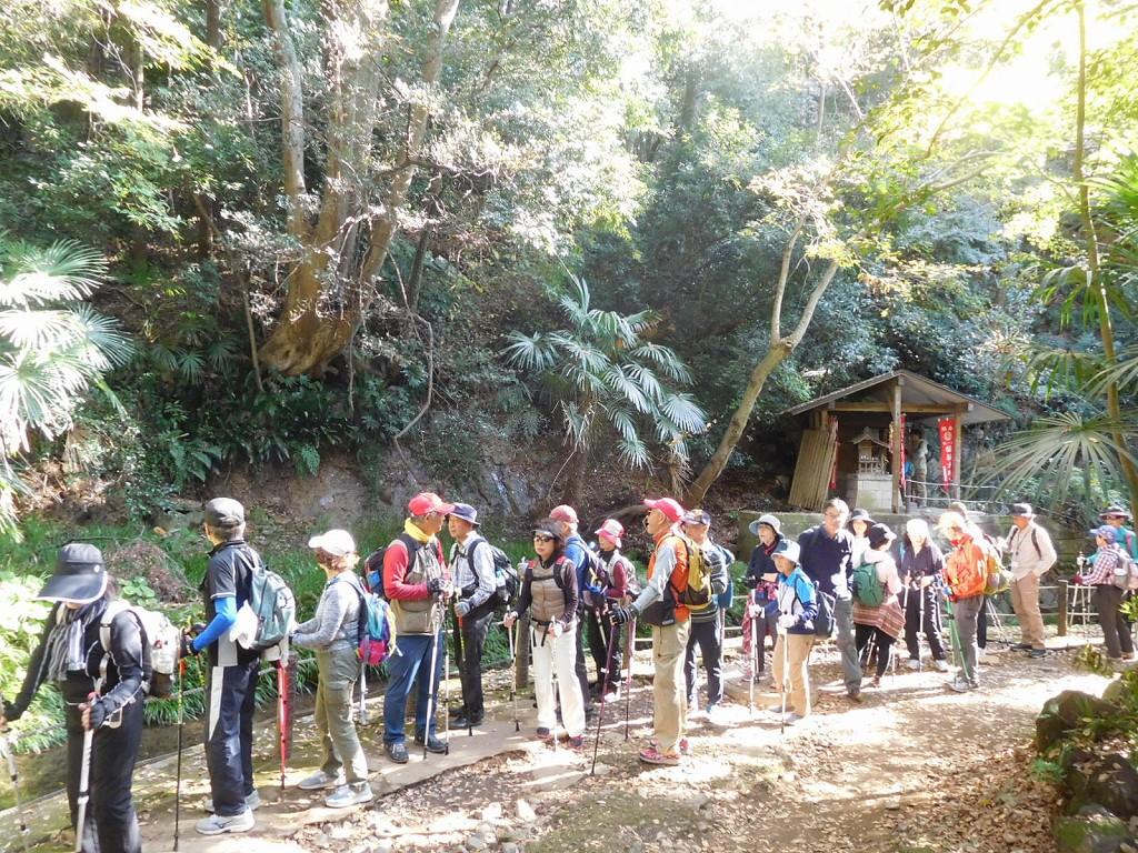 外国人観光客も多い等々力渓谷内をウォーキング