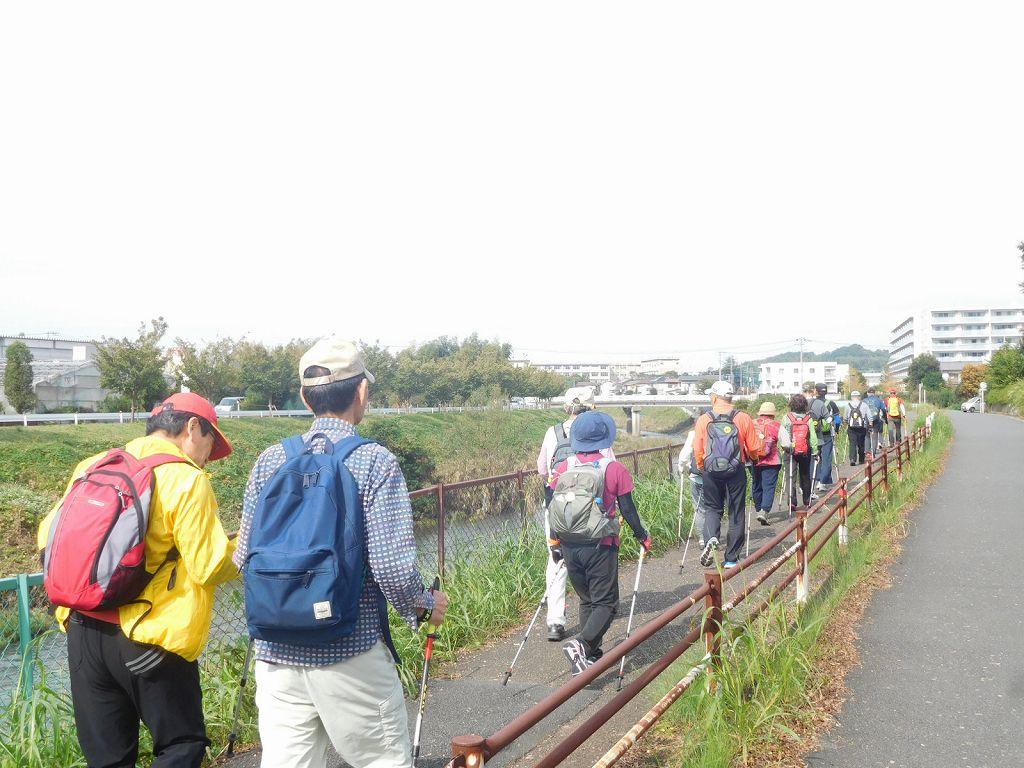 鶴見川も台風の傷跡を残していますが、水は意外と綺麗です