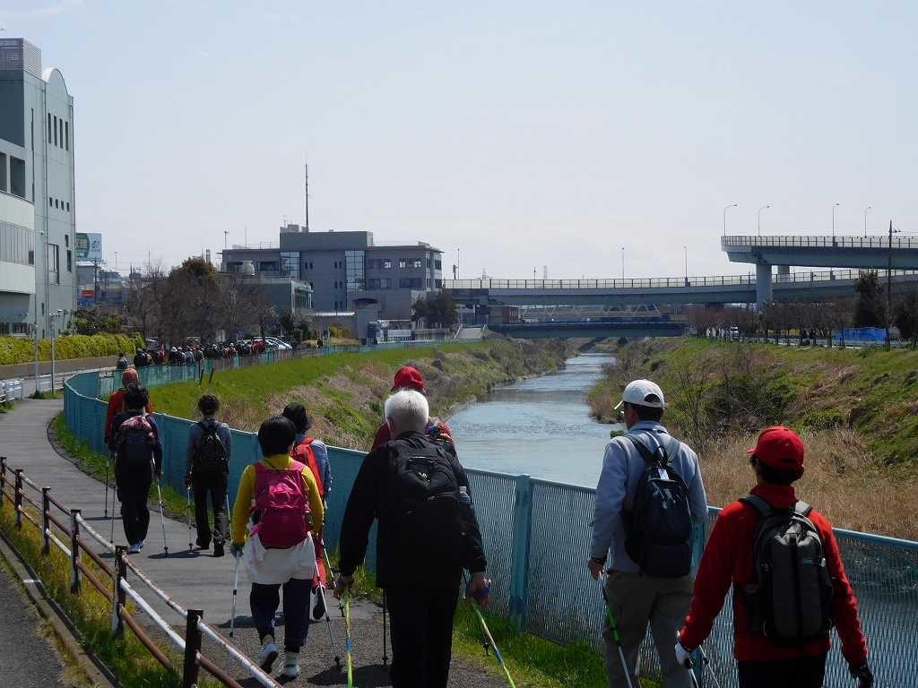鶴見川 青葉消防車付近をウォーキング 、信号で隊列が伸びてしまいました