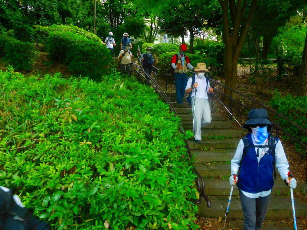 朝霧橋から横浜上麻生線へ
