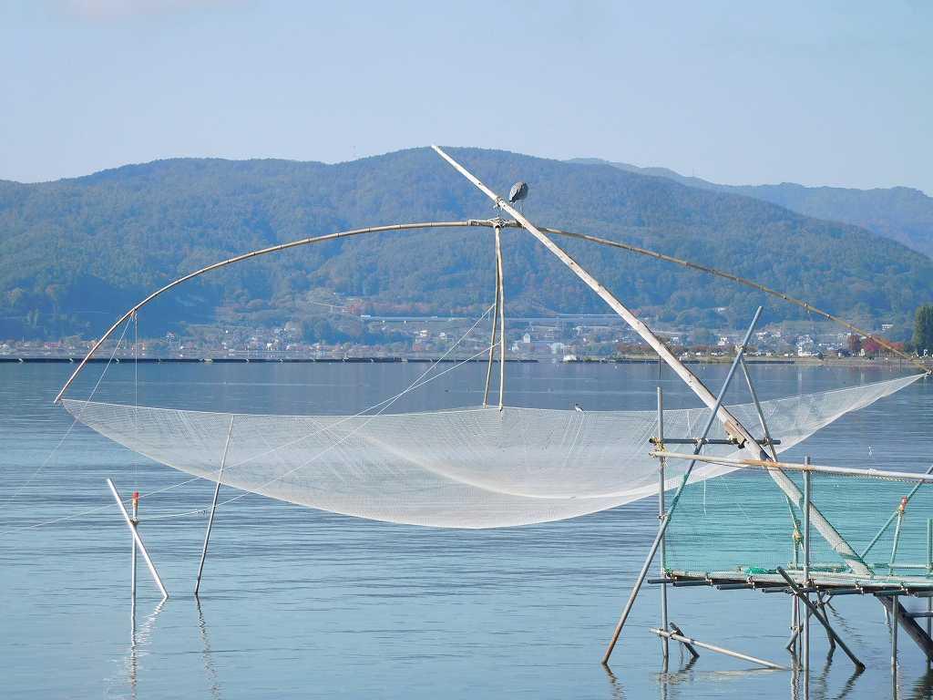 ワカサギ漁の網の上で餌を狙うのか青鷺が一羽