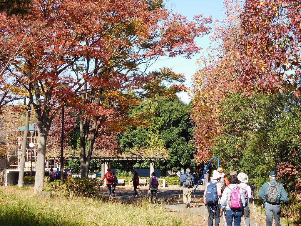 紅葉の小黒公園