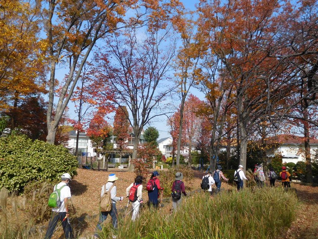 園内の紅葉の下 太陽公園へ向けスタート