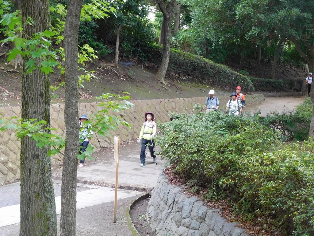 川和富士公園をカットした二班とカリン公園で合流